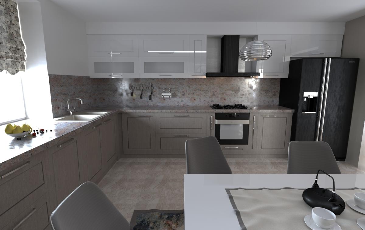 johny turcanu design interior home design (3)